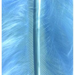 Marabufedern hellblau