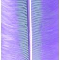 Marabufedern flieder