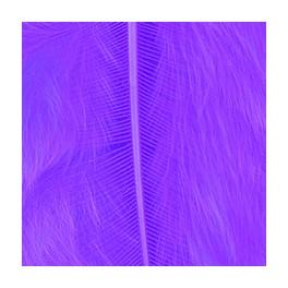 Marabufedern violett