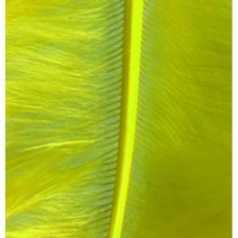 Marabufedern gelb
