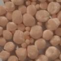 Pompons beige